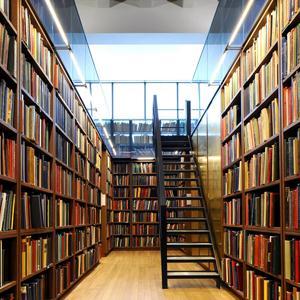Библиотеки Суража