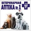 Ветеринарные аптеки в Сураже